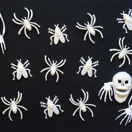 Halloween background. White skeletons, spiders and flies on black paper background. Greeting card, festive backdrop for Halloween holiday. Flat lay, top view.