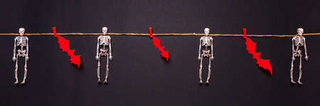 Halloween composition. Skeletons and bats hanging on rope by clothespins on black background. Happy halloween, trick or treat party concept. Flat lay, top view, banner.
