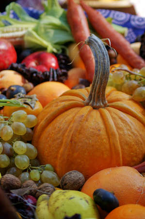 dacha: Closeup of autumn vegetables and fruits