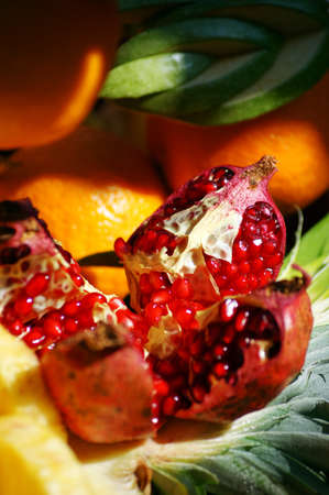 Autumn fruits and vegetables              photo