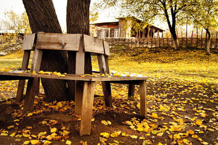 Autumn time: garden bench with yellow leaves and snow photo
