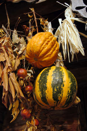 Closeup of autumn vegetables
