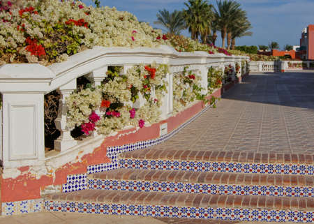 Courtyard of mediterranean villa with ceramic tile walkway and blooming bushes in Egypt              Stock Photo