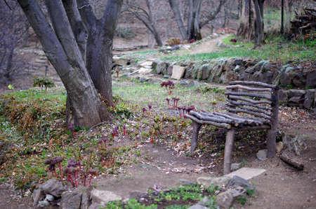 ethnographical: garden bench in Tbilisi botanic garden: spring time
