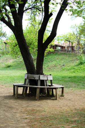ethnographical: garden bench in rural landscape