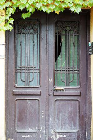 rehabilitated people: Art-Nouveau old door in Tbilisi Old town, Republic of Georgia
