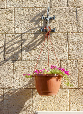 Flower pot on the brick wall background photo