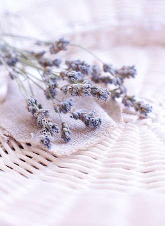 lavendin: Dry Lavender flowers on sackcloth Stock Photo
