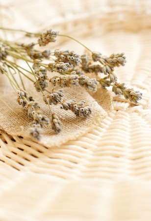 Dry Lavender flowers on sackcloth photo