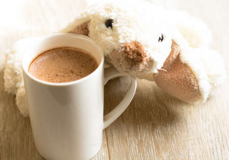 Cacao drink in the mug and old soft toy photo