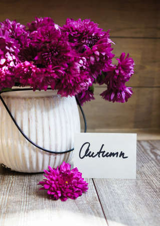 good morning: Purple chrysanthemum flowers in a vase on the table Stock Photo