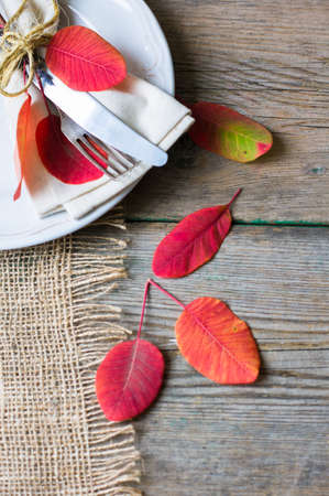 dinner food: Rustic autumnal table setting with yellow leaves and berries Stock Photo
