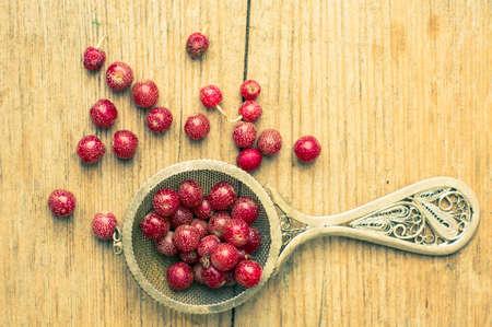 frutas secas: Bayas gojy maduros en la rama del arbusto en la placa de la vendimia