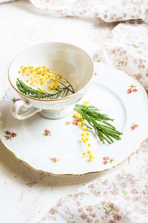 vintage cutlery: Spring festive dining table setting with yellow mimosa flowers, napkins and vintage cutlery on a white wooden board Stock Photo
