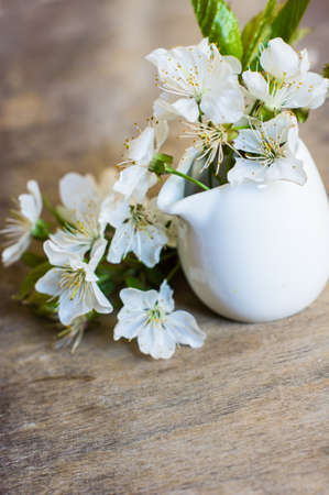 blossom time: Spring time cherry blossom on the rustic table Stock Photo