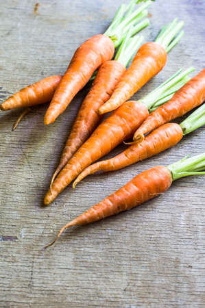 Ripe fresh organic carrots on rustic wooden background