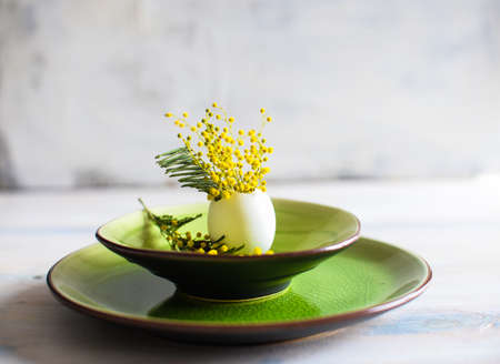 Table setting for Easter dinner with blooming mimosa acacia flowers and eggs on bright green plates Stock Photo