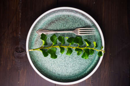 Rustic table setting with vintage ceramic plates and branch of ivy plant on dark old wooden & Rustic Table Setting With Vintage Ceramic Plates And Branch Of ...