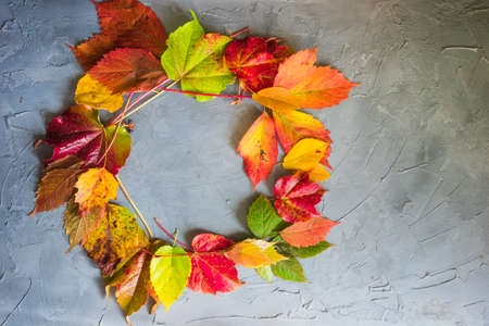 Autumnal red, yellow and green leaves as a falltime background with copyspace