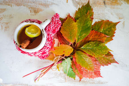 Cup of tea with lemon and knitted scarf on rustic background full of autumnal leaves with copyspace