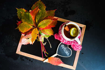 Bright autumnal leaves on chalkboard with copyspace Stock Photo