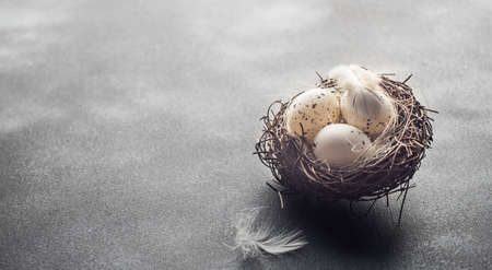 Easter holiday concept with nest and easter eggs on wooden background with copyspace 写真素材