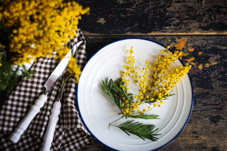 Spring table setting with bright yellow mimosa flowers Stockfoto