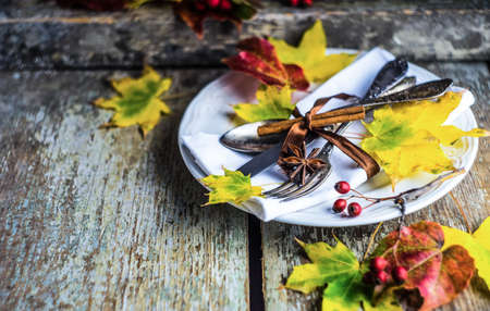 Autumnal table setting with bright red and orange wild berries on rustic background with copyspace