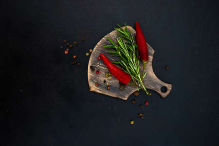 Organic food cooking concept with fresh spices on dark background with copyspace