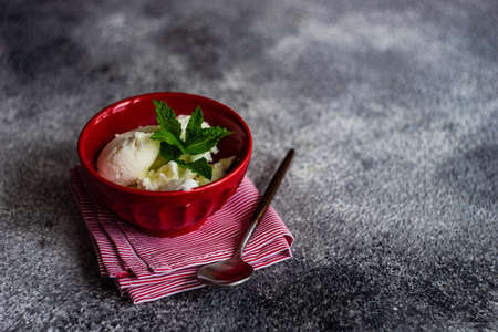 Dessert concept with vanilla ice cream decorated with fresh mint leaves and chocolate pieces