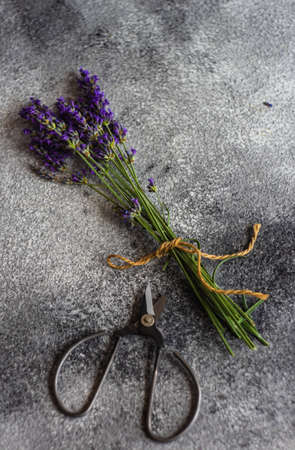 Fresh lavender flowers on rustic background with copy space Stock fotó