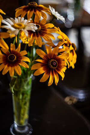 Beautiful summer bouquet with coreopsis flowers Reklamní fotografie