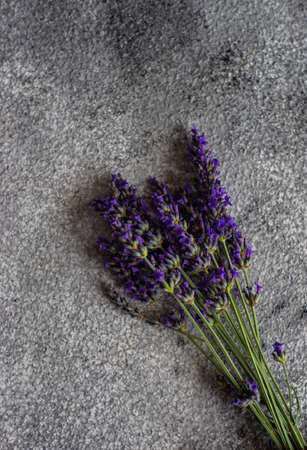 Fresh lavender flowers on rustic background with copy space Reklamní fotografie - 125333353