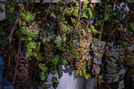 Fresh grape on the stand during the Tbilisoba celebration