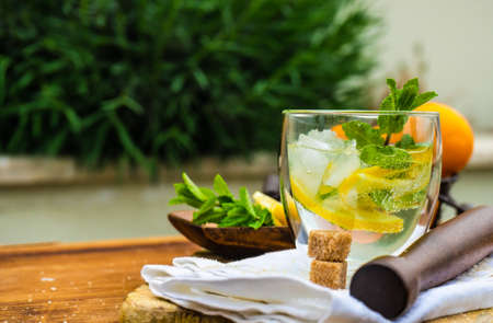 Tasty gin and tonic cocktail with slices of lemon and fresh mint on rustic background with copy space