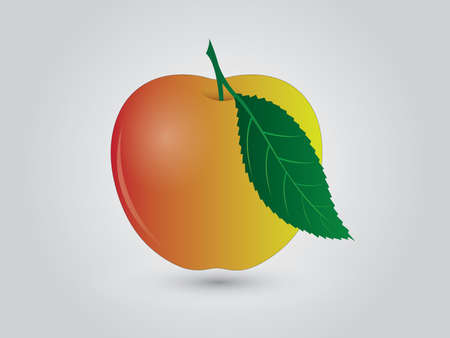 A yellow and reddish apple with green leaf on white background
