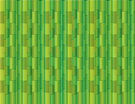 Abstract green background using many straight bamboos for presentation vector illustration Ilustrace