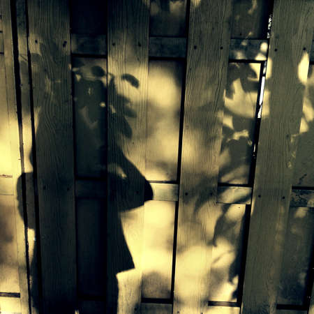 shadow: The shadow of myself.