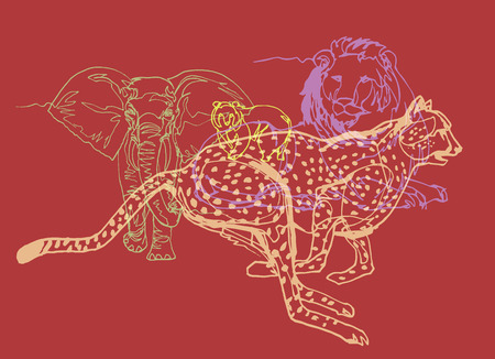 Animals collection, colorful lines on red, safari, Africa, wild nature theme. Overlapped drawings, elephant, lion, bear, cheetah.