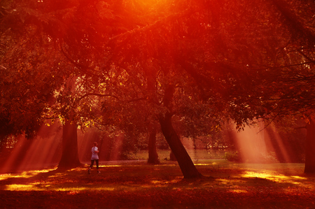 sunset in the park girl in sportswear makes a run, playing sports among the trees in the sun, breaking through the foliage. Reddish orange tonality, sport, healthy lifestyle, modern active lifestyle Reklamní fotografie