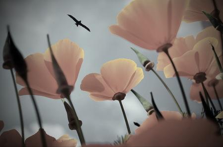 orange flowers on background of blue sky, bird flying, faint colors