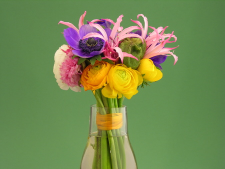 bouquet of flowers in a vase on blurred background, close up