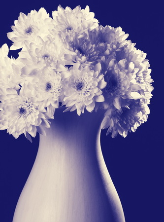 bouquet of flowers in vase on blue background