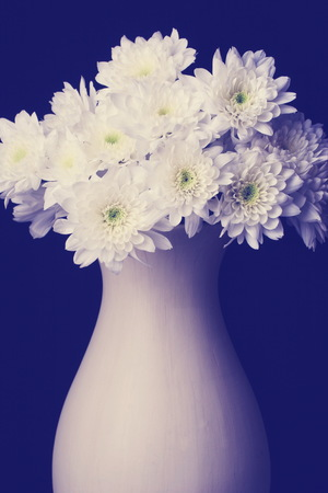 bouquet of flowers in vase isolated on black,  Chrysanthemums