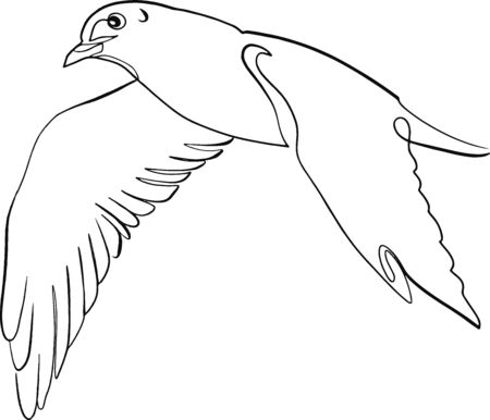 sketch of a bird, seagull, flight, continuous line