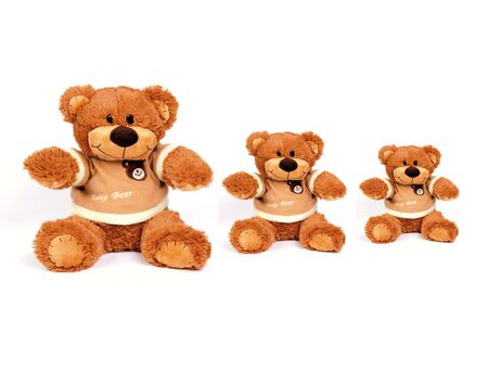 3 similar teddy bear isolated on white background
