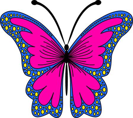 beautiful moth Illustration