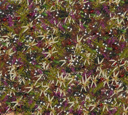 Bunte Insekten mit einem soliden Hintergrund Standard-Bild - 69912940