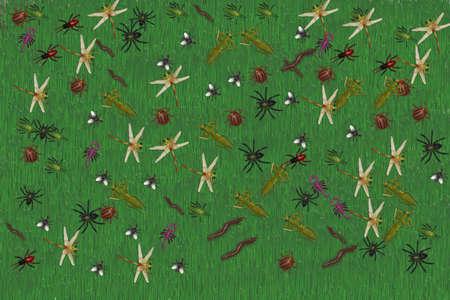 Käfer und Heuschrecken auf grünem Hintergrund Standard-Bild - 69912943