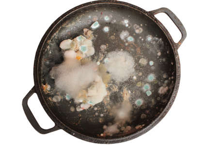 Rotten and moldy food closeup on a pan isolated Standard-Bild - 87881864